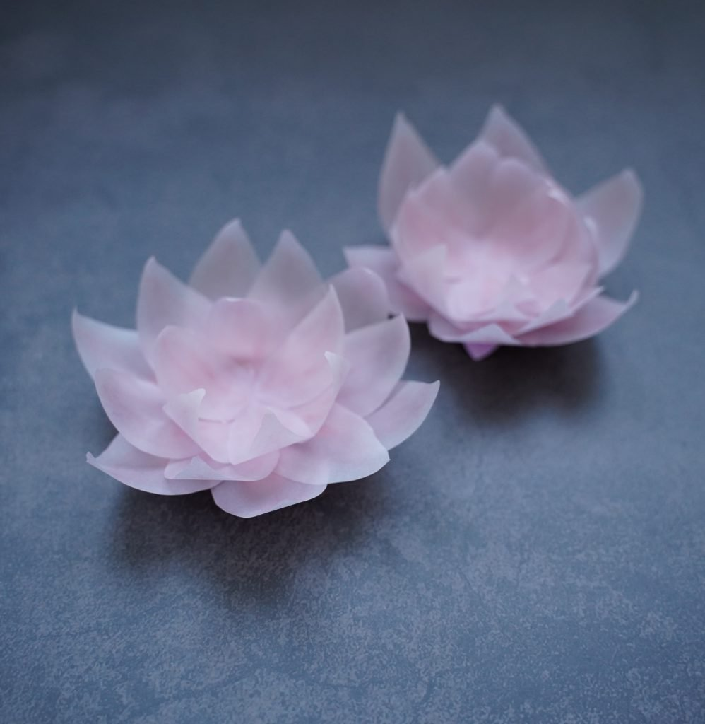 free printable paper lotus flower template and SVG cut file