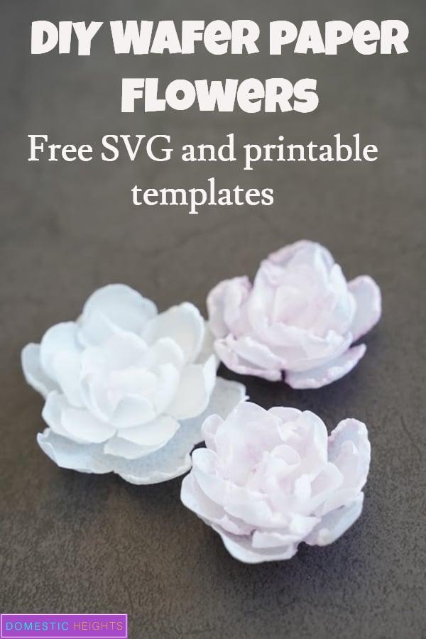 DIY Wafer Paper flowers