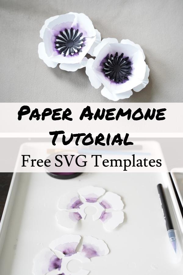 paper anemone flower