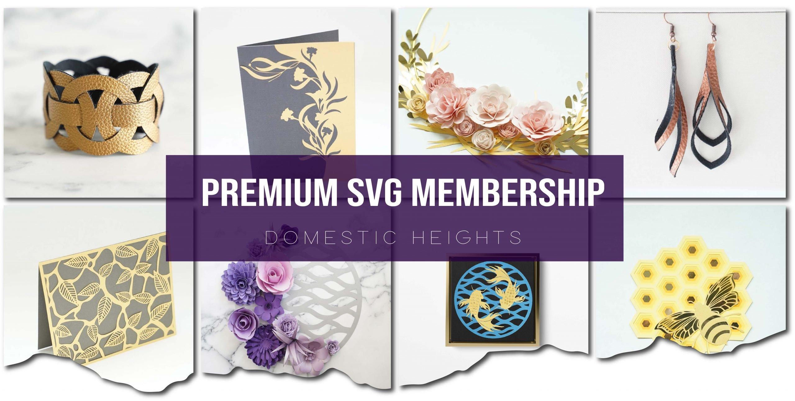 SVG member plan header