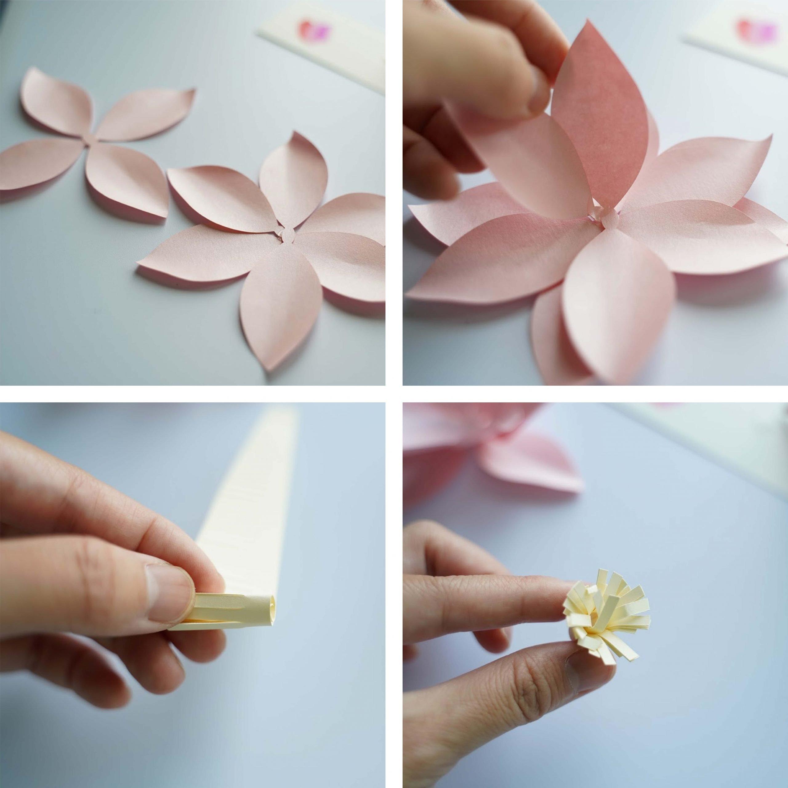 star magnolia tutorial collage