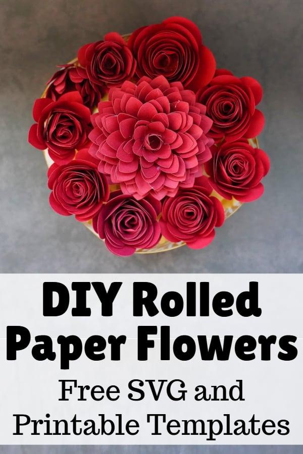 free rolled paper flower SVG