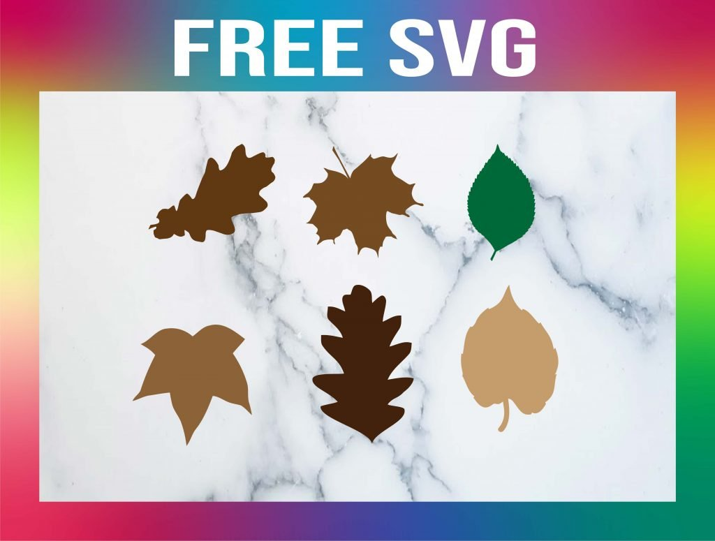 fall leaves SVG free