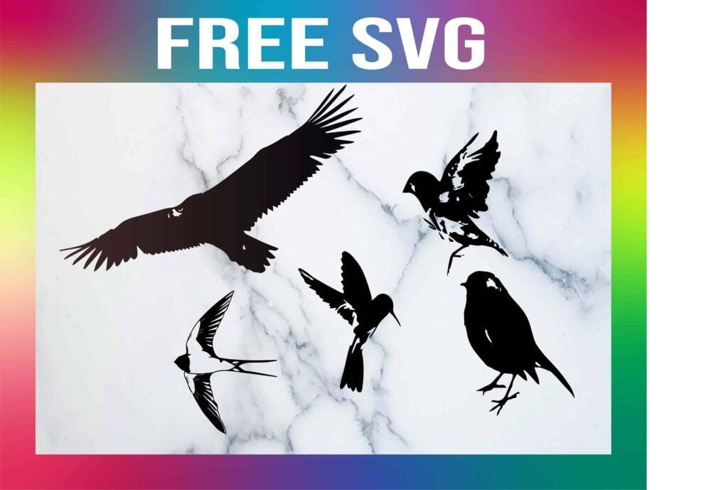 Free Birds SVG